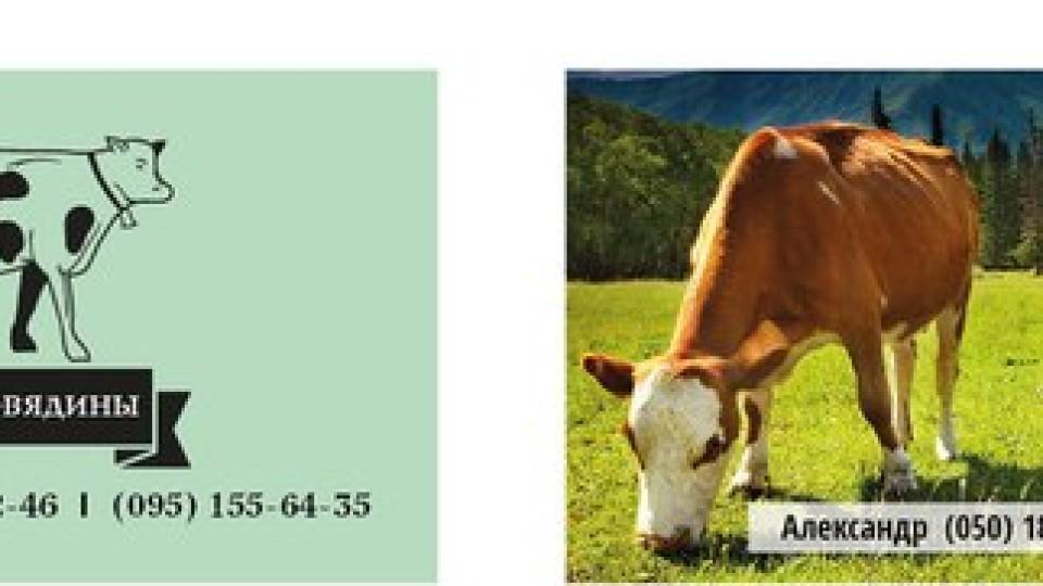 визитки для мясоеда